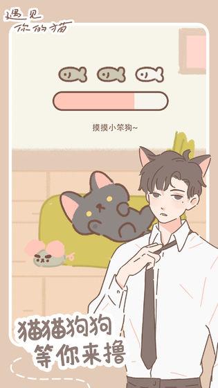遇见你的猫游戏截图